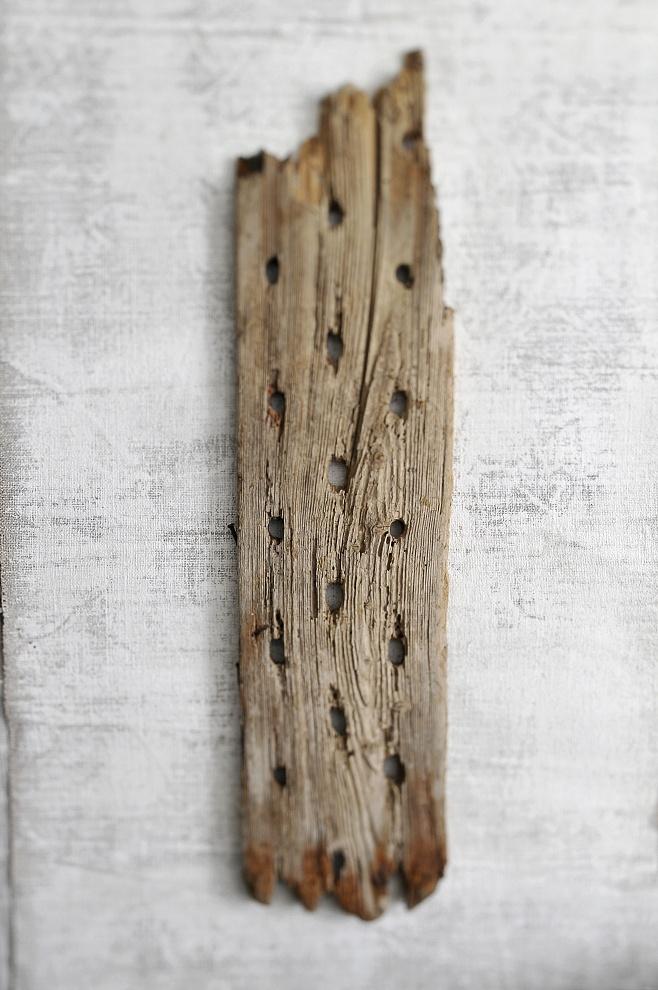 Legno Mare ( Sea Wood) - 2011 tiratura variabile 1/7 stampa su Photo Rag BW 100% cotone