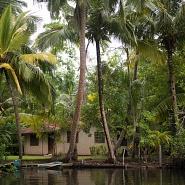 Excursion to madu river