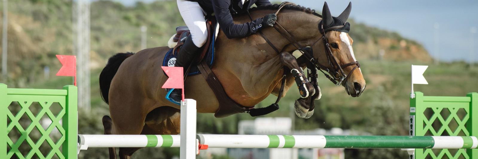 Mediterranean Equestrian Tour  | International Horse Competition