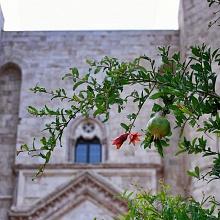 Andria - Castel del Monte   Puglia