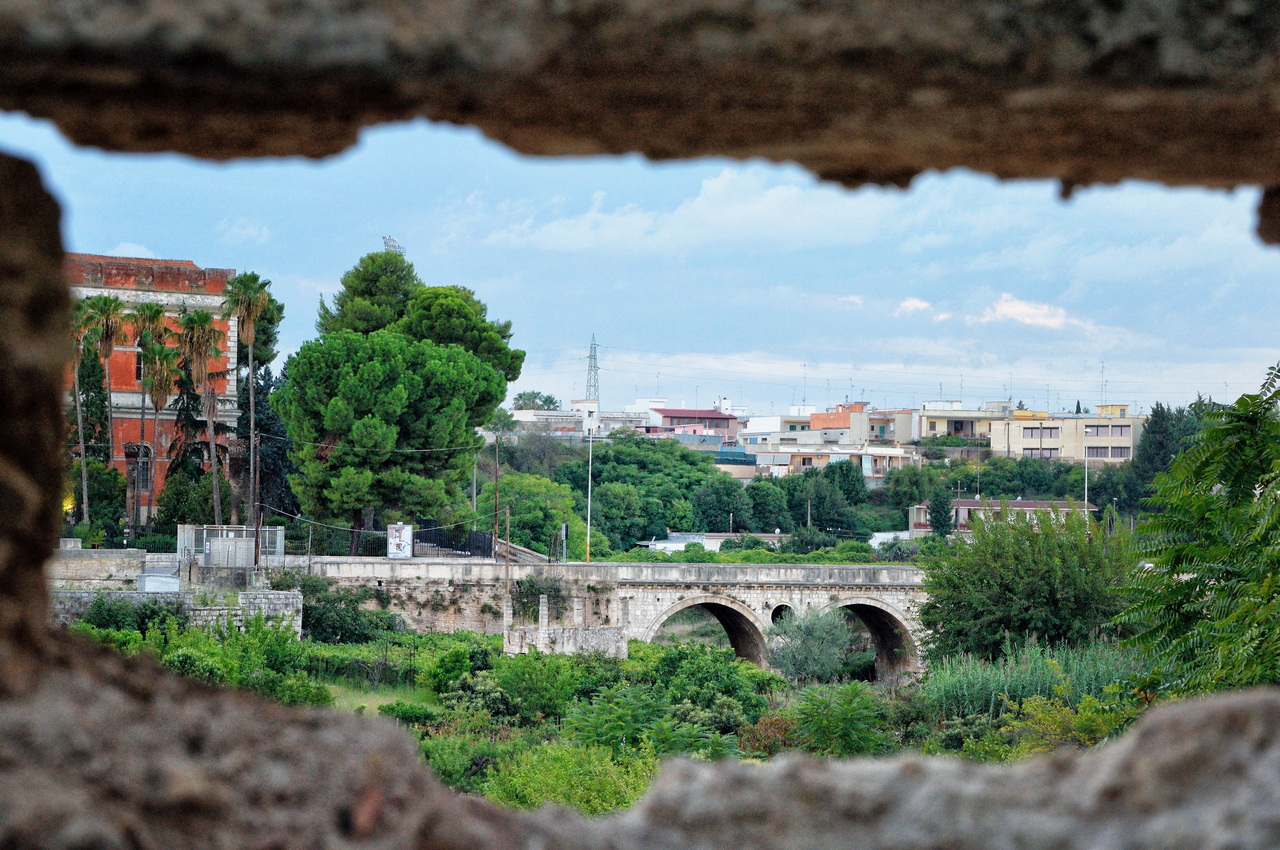Bitonto | Puglia
