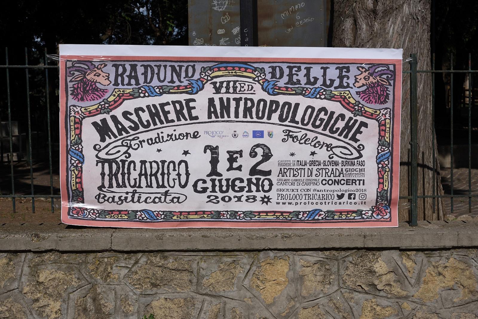 Il carnevale di Tricarico.